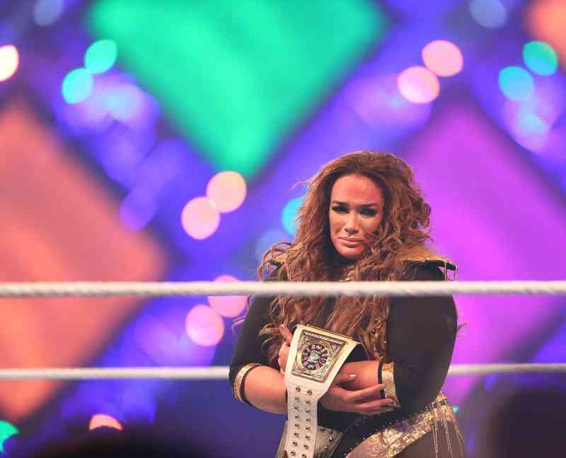 WWE Divas datovania WWE zápasníci